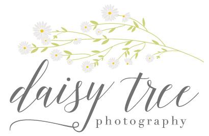 Daisy Tree Photography